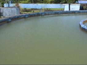 CWA : amélioration de la distribution de l'eau